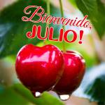 Julio:5