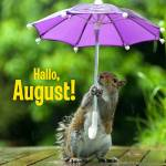August:0