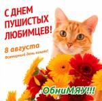 Всемирный день кошек:1