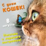 Всемирный день кошек:2