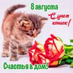 Всемирный день кошек:3