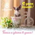 Всемирный день кошек:4