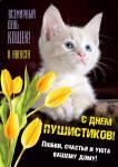 Всемирный день кошек:7