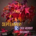 September:2
