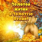 Осенние поздравления:3