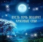 Спокойной ночи!:44