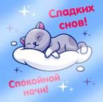 Спокойной ночи!:47