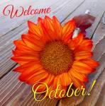 October:0