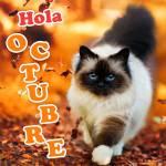 Octubre:1