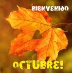 Octubre:6