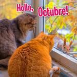 Octubre:11