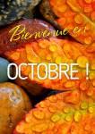 Octobre:2