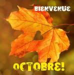 Octobre:6