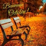Octobre:10