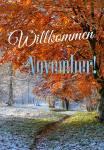 November:12
