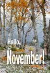 November:13