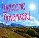 November:8