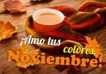 Noviembre:7