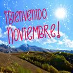 Noviembre:8