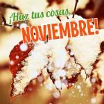 Noviembre:10