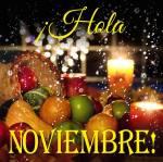 Noviembre:11