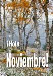 Noviembre:13