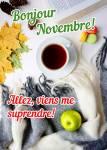 Novembre:2