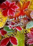 Novembre:0