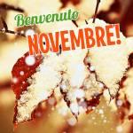 Novembre:10