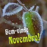 Novembro:9