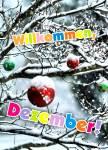 Dezember Winter:1