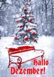 Dezember Winter:2