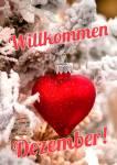 Dezember Winter:5