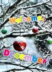 December Winter:1