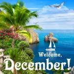 December Summer:2