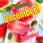 December Summer:4