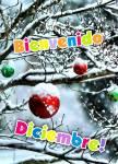 Diciembre Invierno:1