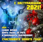 Новый год:26