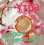 Доброе утро!:147